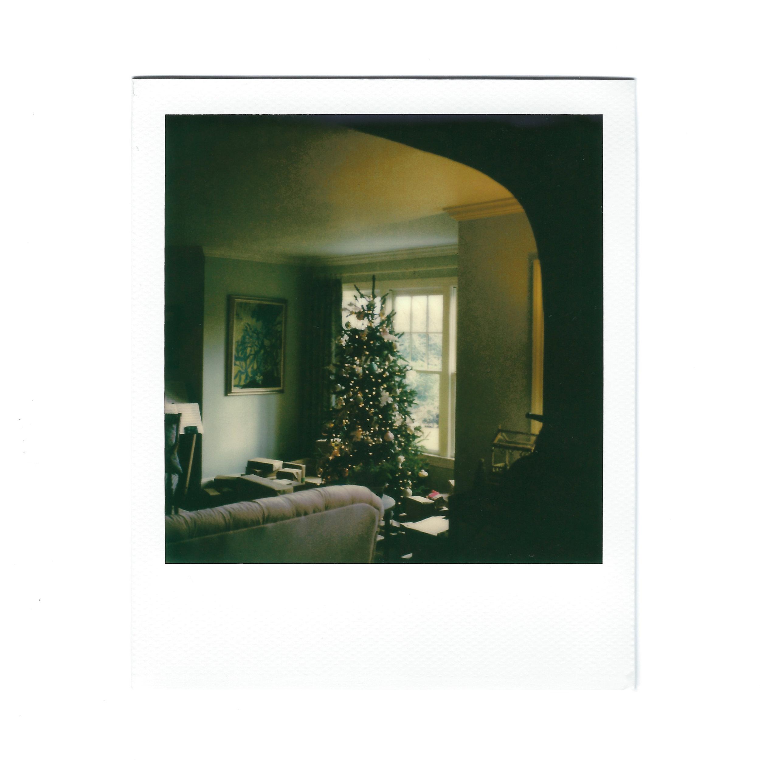 christmast-tree-polaroid.jpg