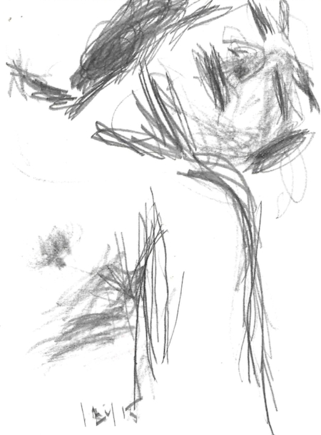 sleeping woman, pencil on paper, 2015