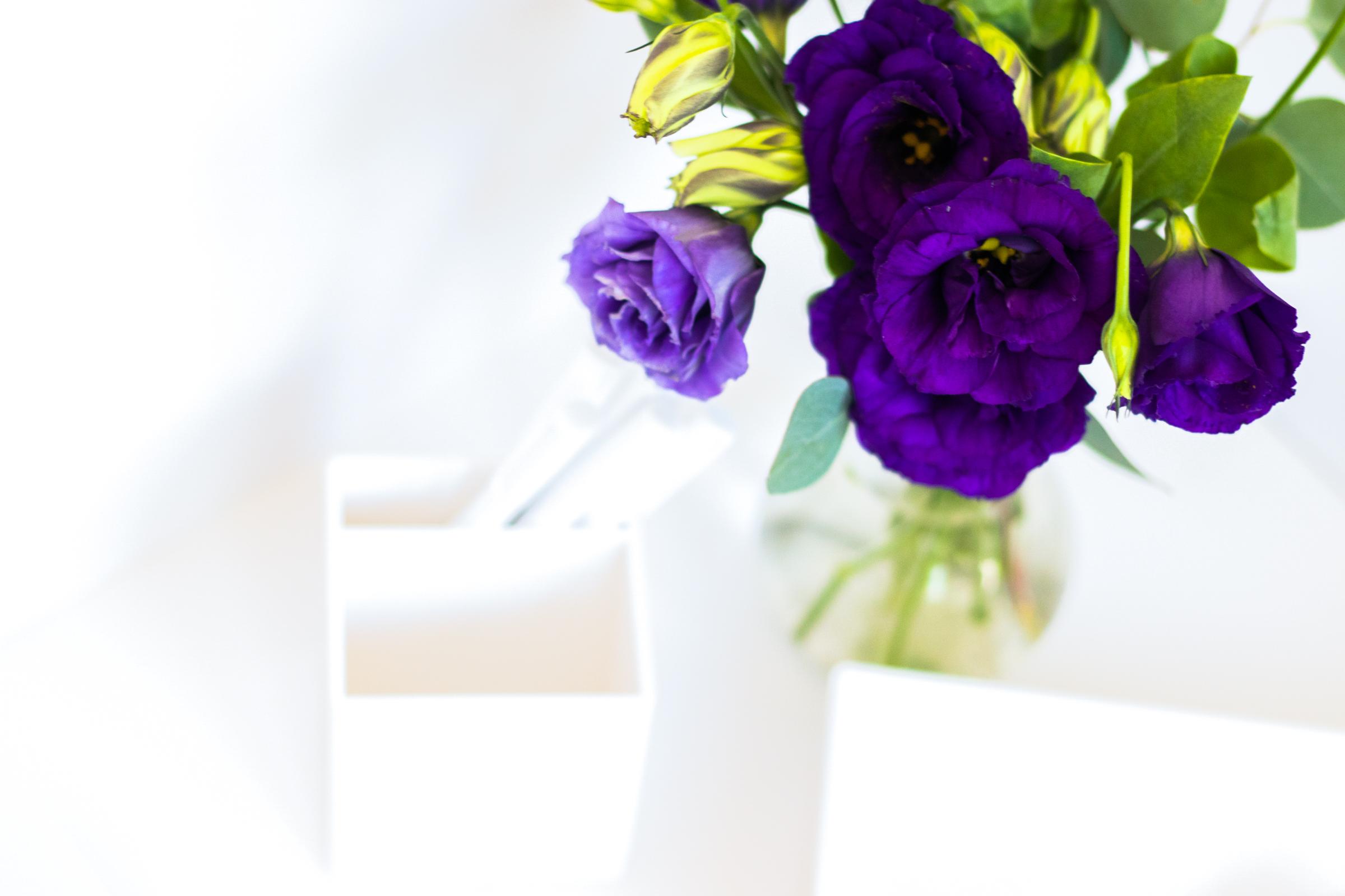 PBD-Purple-Lizzie-4.jpg
