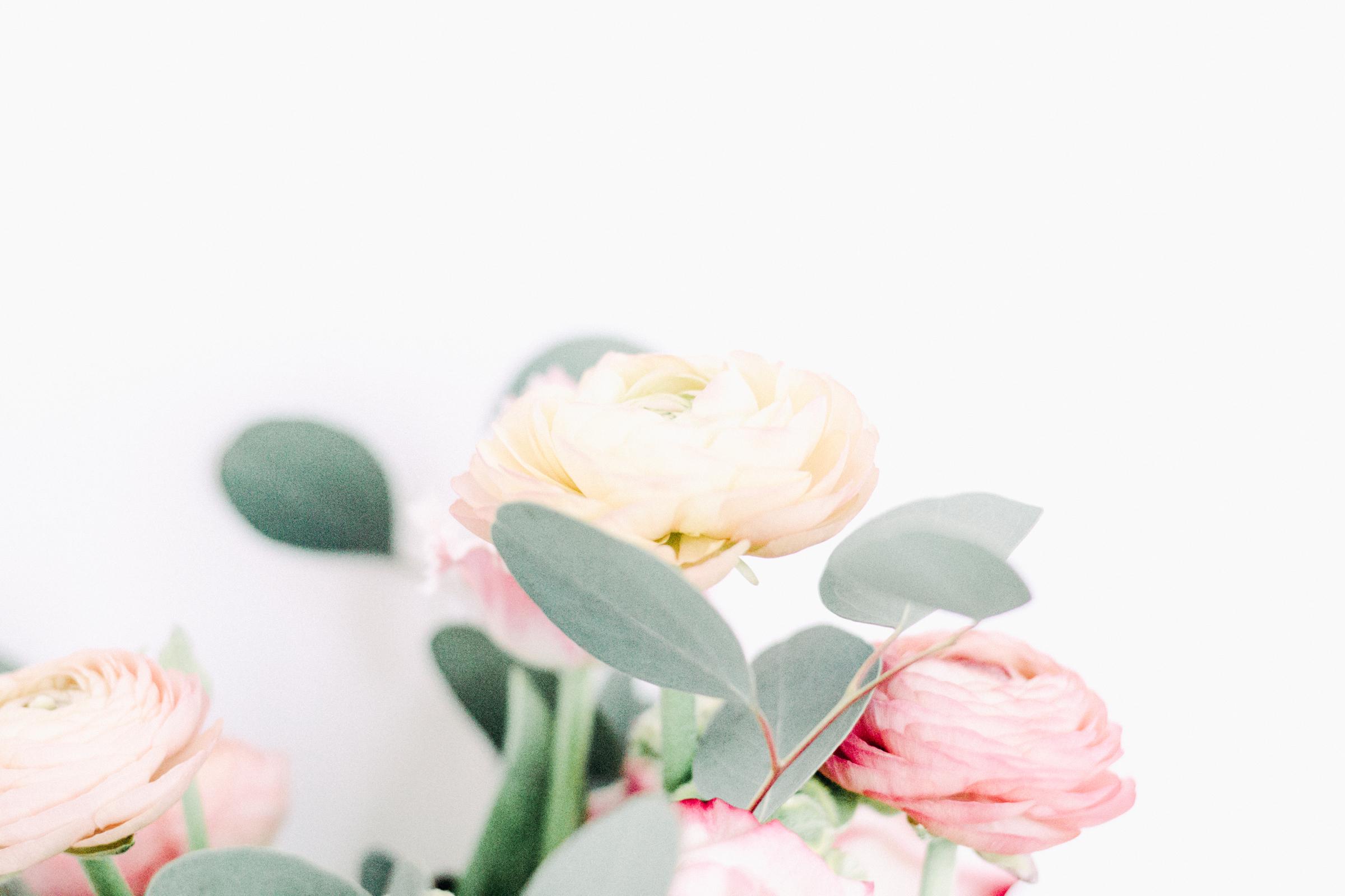 PBD-Darling-Flowers-10.jpg