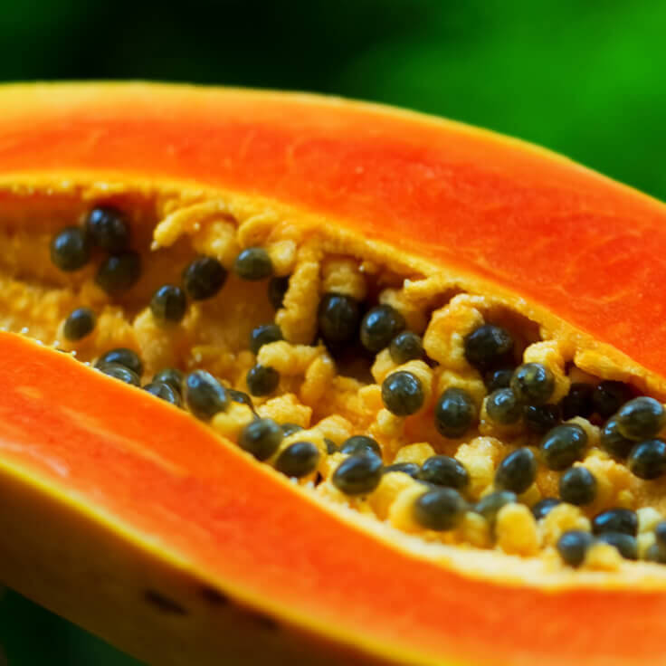 PAPAYA SEED OIL.jpg