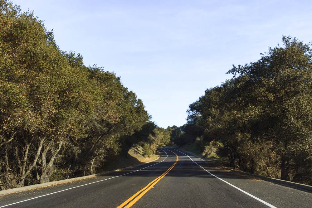 backroads-3.jpg