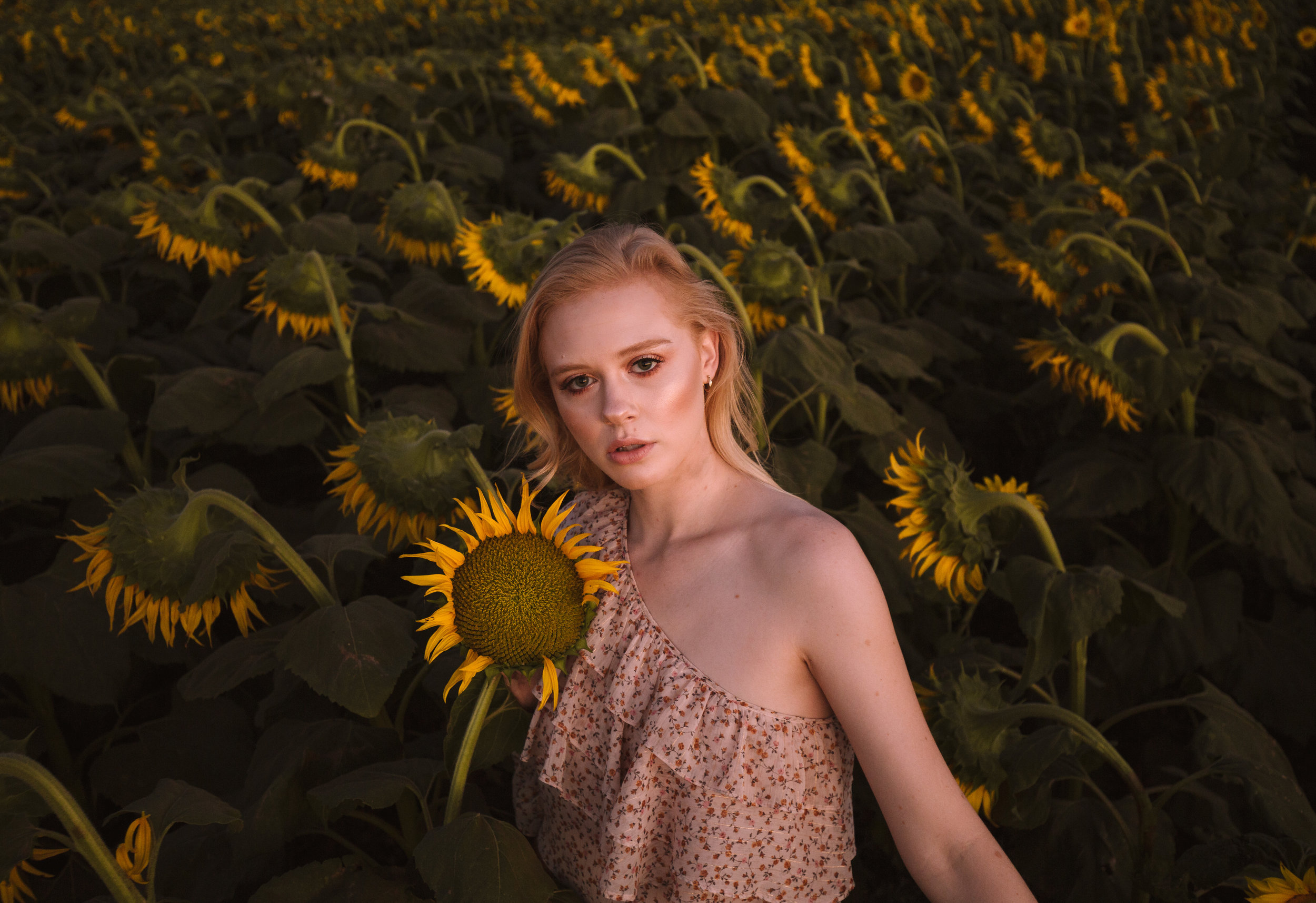 sunflowermeetup-26.jpg