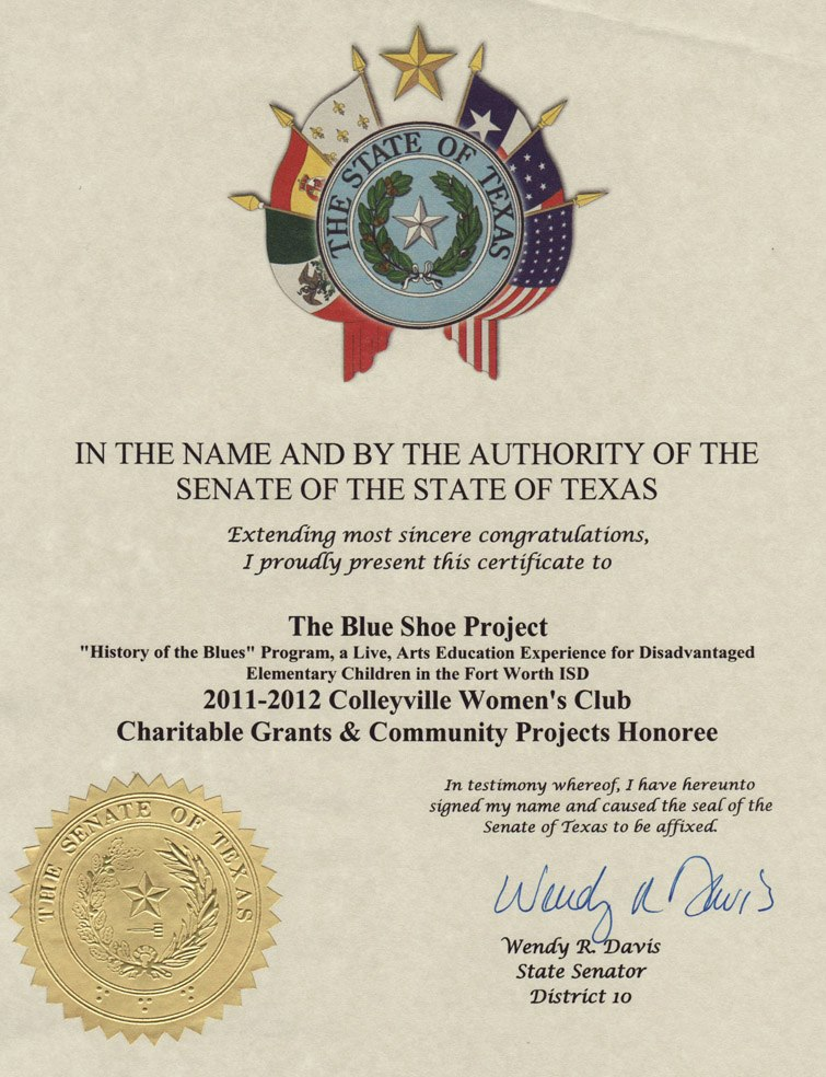 state-of-texas-awards-the-blue-shoe-project.jpg