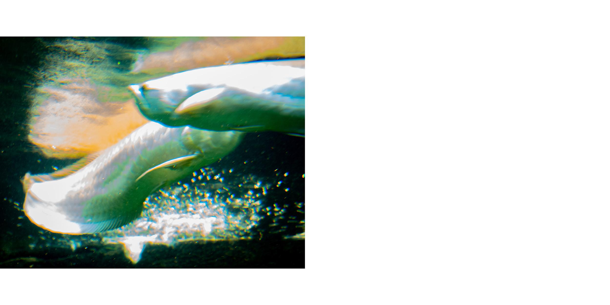 fotoskolen fatamorgana_32-33.jpg