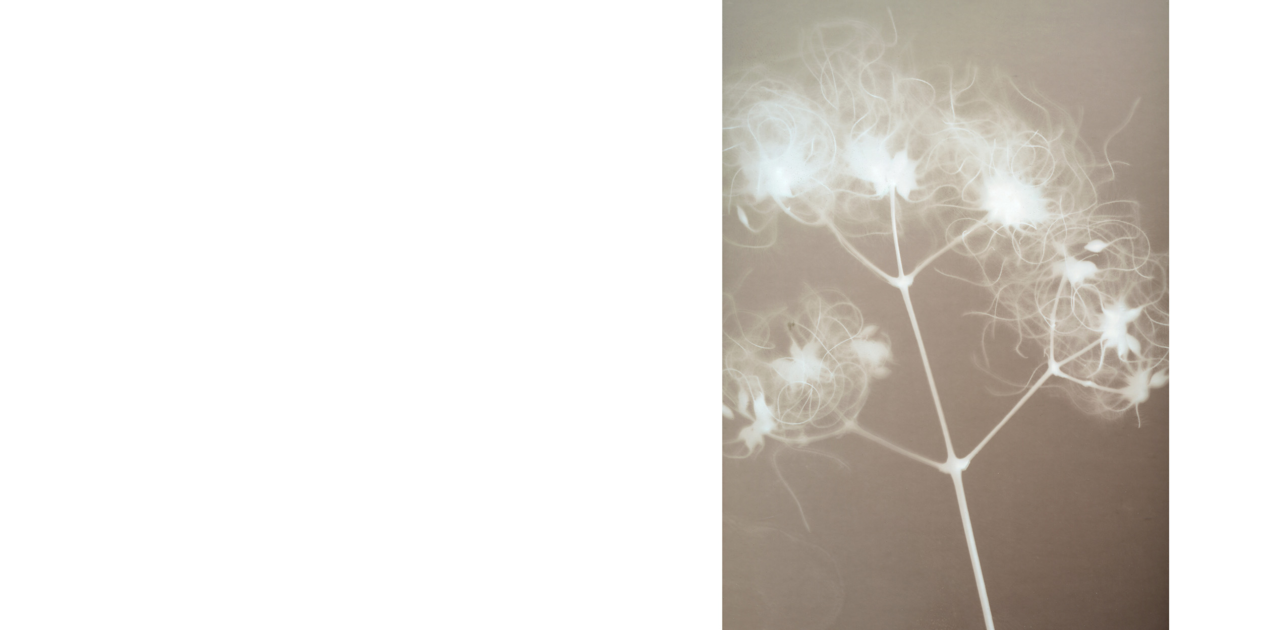 fotoskolen fatamorgana_44-45.jpg