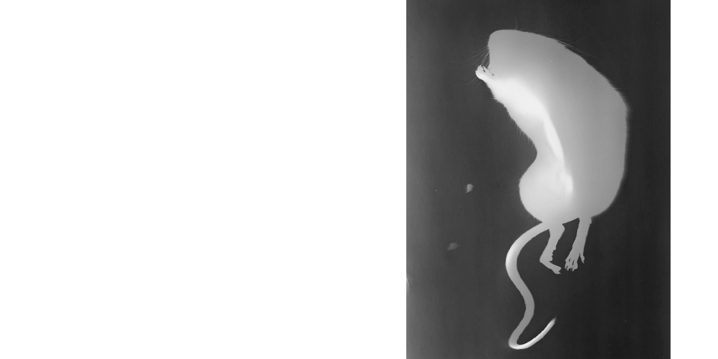 fotoskolen fatamorgana_48-49.jpg