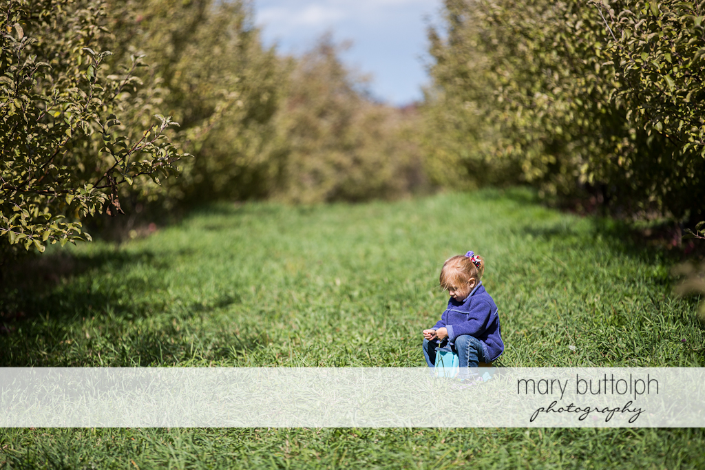 Girl sits on the grass in the garden at Beak & Skiff Apple Orchards