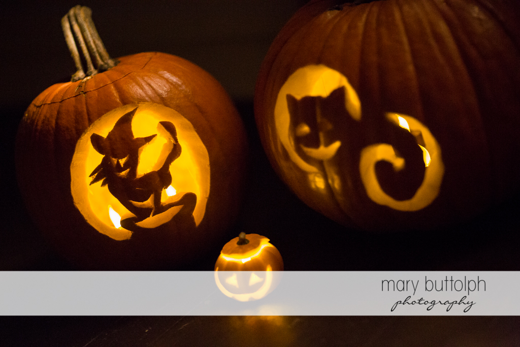 Carved pumpkins ready for Halloween at Skaneateles