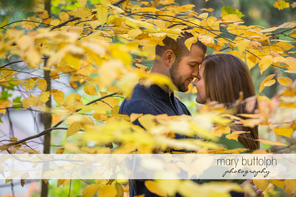 Couple get romantic in the woods at Skaneateles Engagement