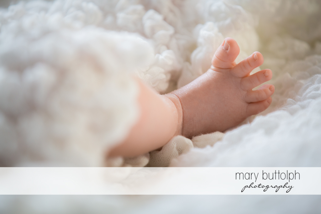 Close up shot of baby's little foot at Skaneateles Newborn Photography