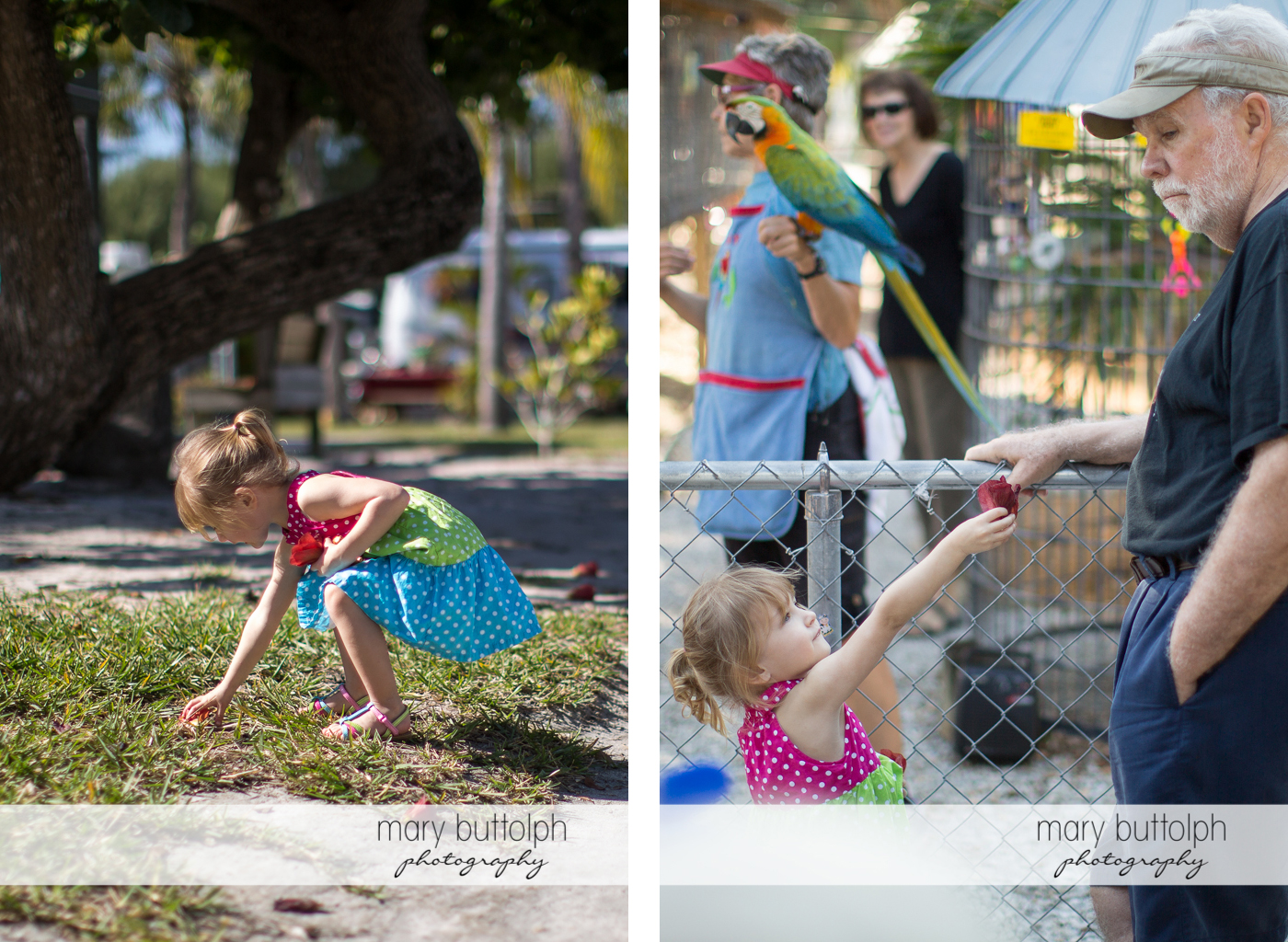 Girl picks and gives flowers to people in the aviary at Sanibel Island Vacation