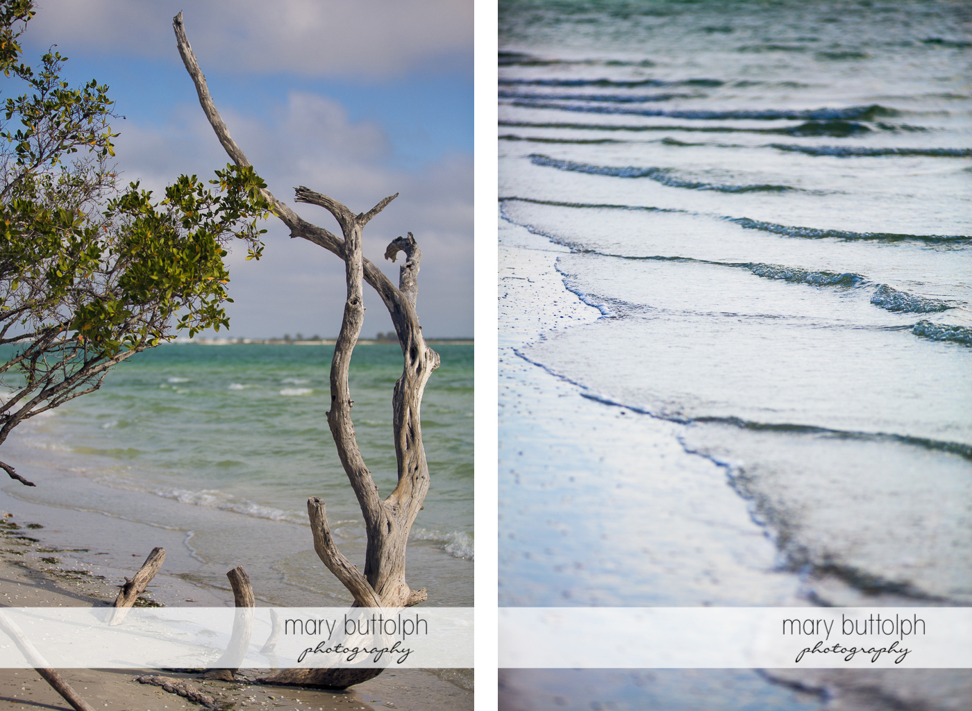 Tree trunk on the beach and the cool inviting waters at Sanibel Island Vacation