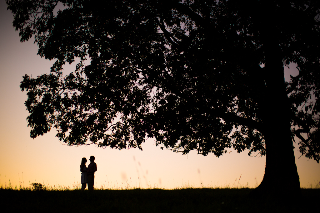 Couple pose under a big tree in the field at Skaneateles Engagement