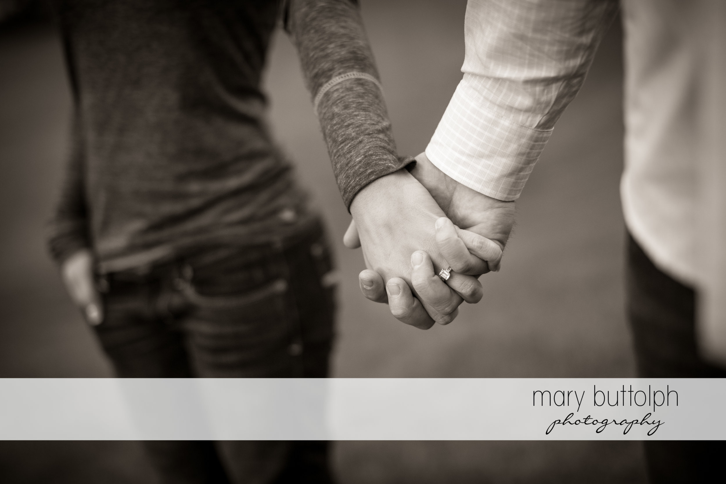 Woman's engagement ring is visible as the couple hold hands at SUNY Geneseo Engagement