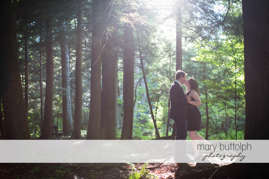 Couple kiss in the woods at Beaver Lake Nature Center Engagement