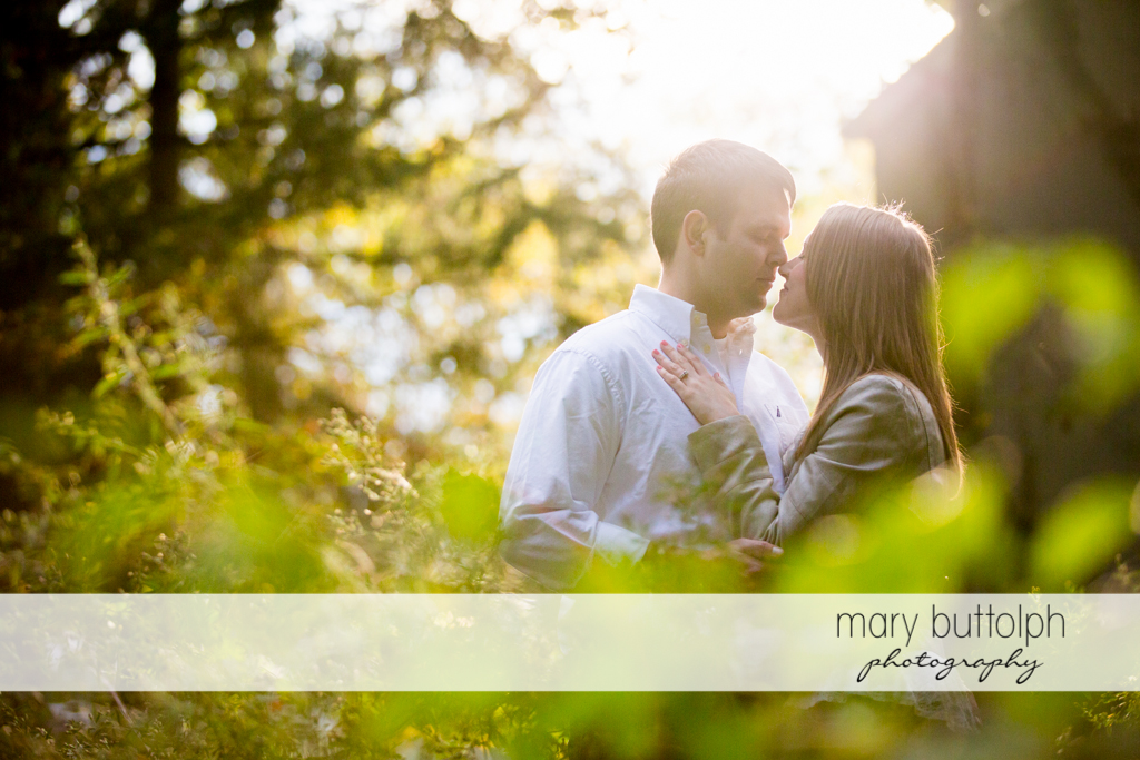 Couple show their affection in the woods at Skaneateles Engagement