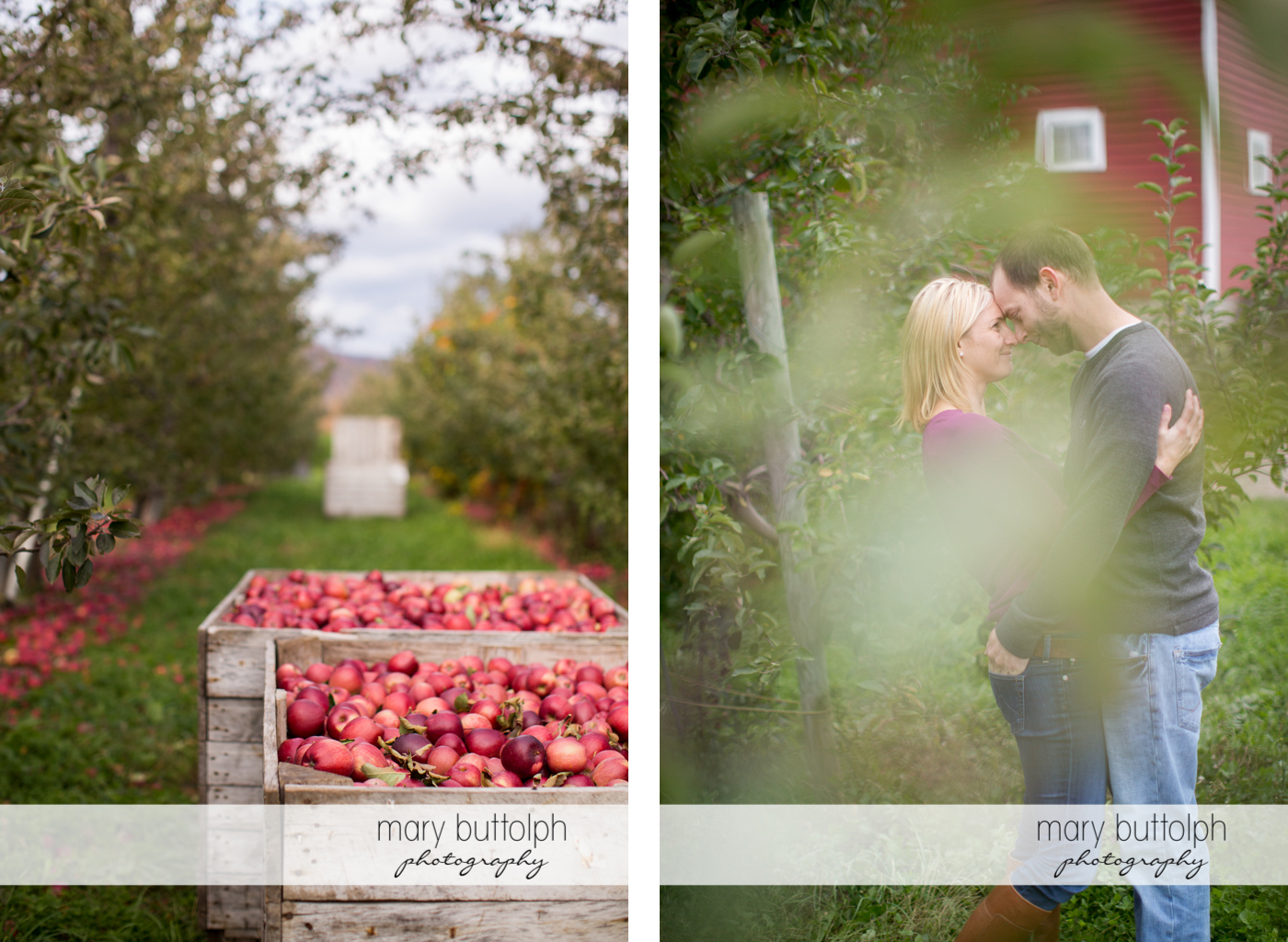 Apple crates in the garden while couple pose for the camera at Beak & Skiff Apple Orchards Engagement