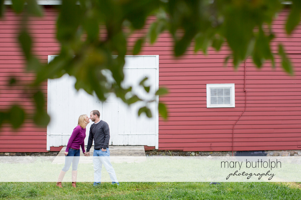 Couple rub noses in front of a barn at Beak & Skiff Apple Orchards Engagement