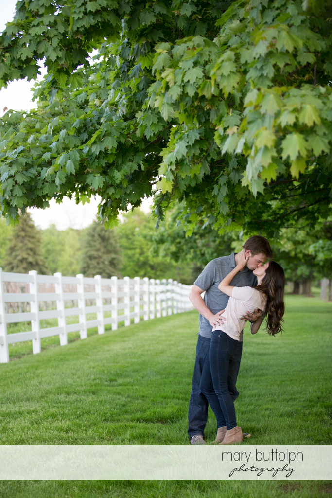 Couple kiss under a tree in the garden at Skaneateles Engagement
