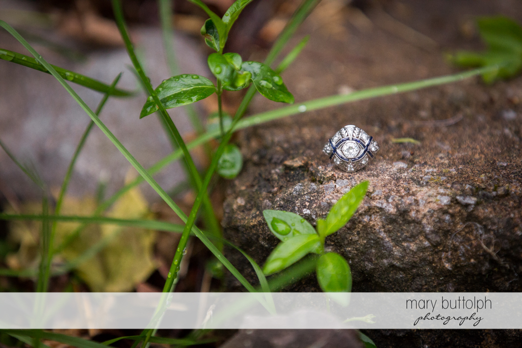 Woman's engagement ring rests on a rock at the Hamilton Inn Engagement