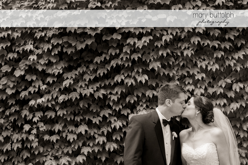 The couple kiss in front of a wall of plants at the Inns of Aurora Wedding
