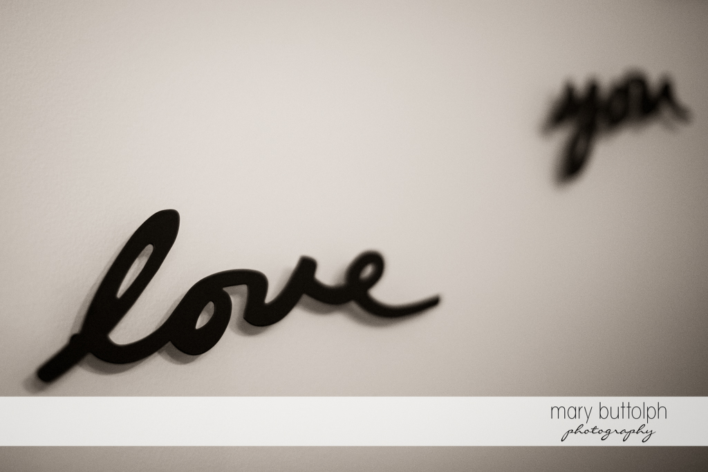The foundation of any marriage begins with these words at the Inns of Aurora Wedding