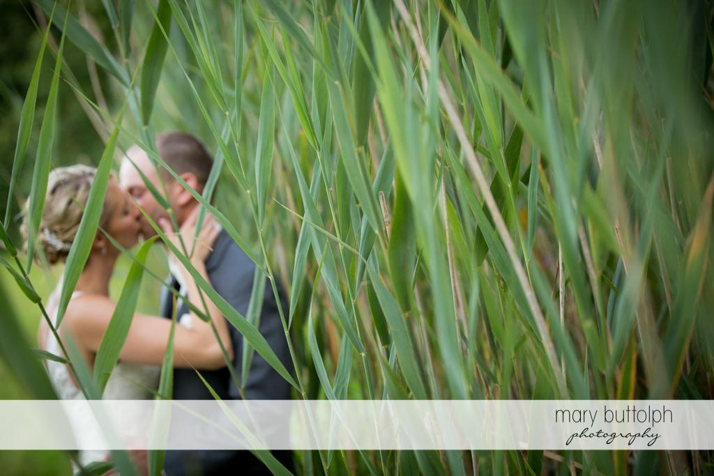 Couple kiss near plants at Arrowhead Lodge Wedding