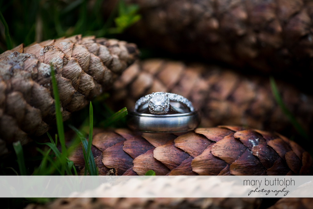 Couple's wedding rings on top of a cone at Arrowhead Lodge Wedding