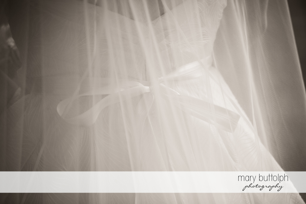 Medium shot of the bride in her wedding gown at the Hamilton Inn Wedding
