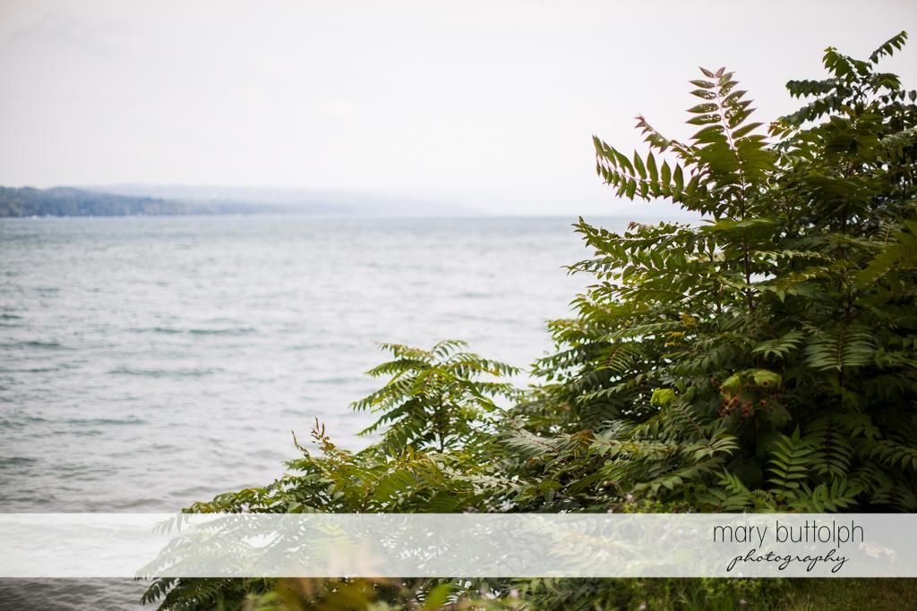View of the beautiful lake at Anyela's Vineyards Wedding