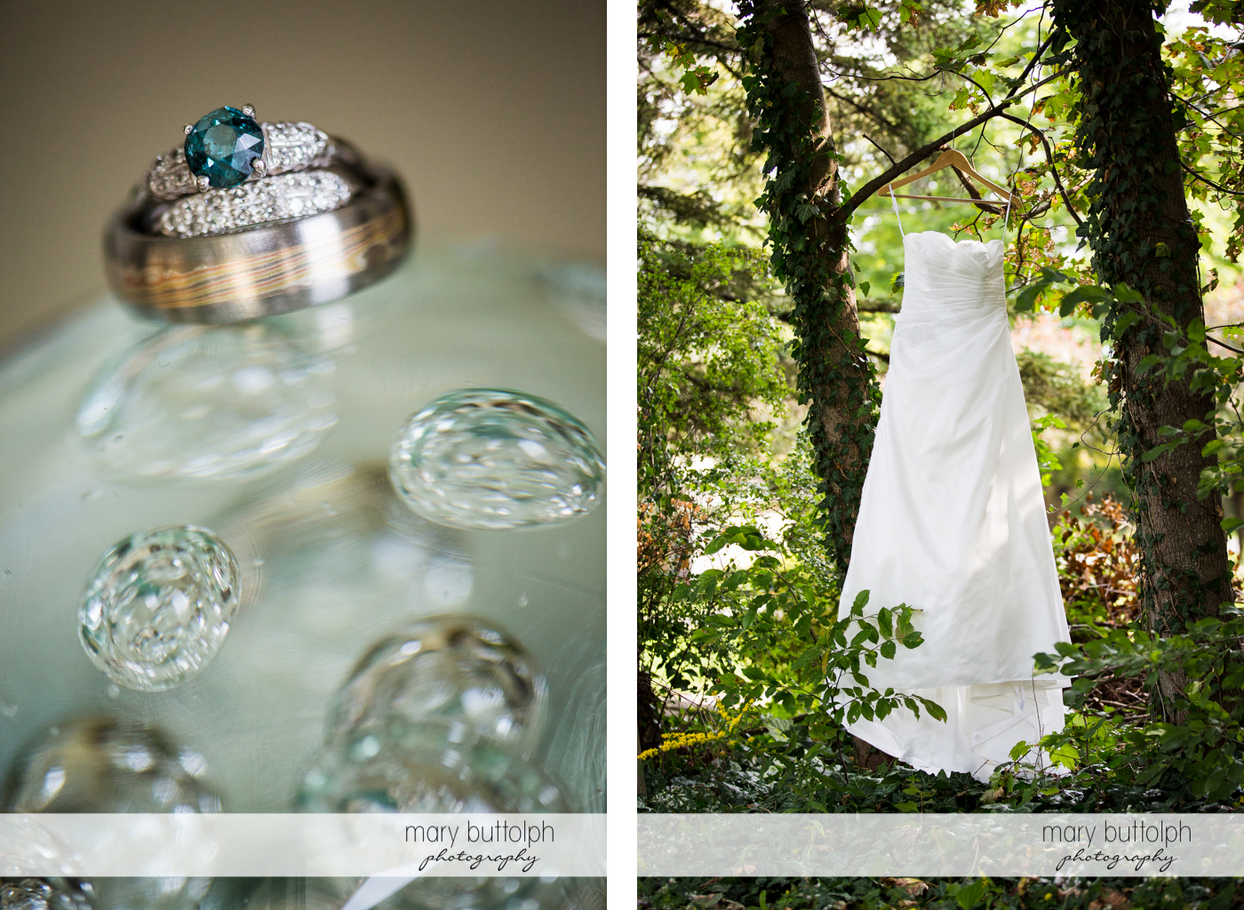 Close up of the couple's wedding rings and the bride's wedding gown hanging from a tree at Anyela's Vineyards Wedding