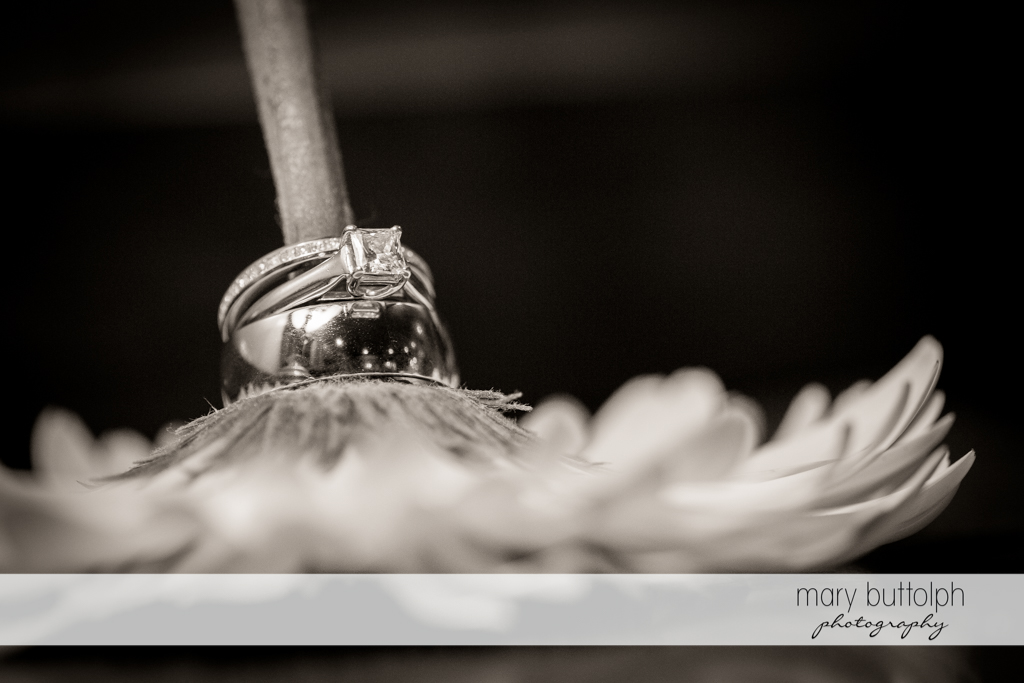The stem of a flower makes a perfect stand for the couple's wedding rings at the Sherwood Inn Wedding
