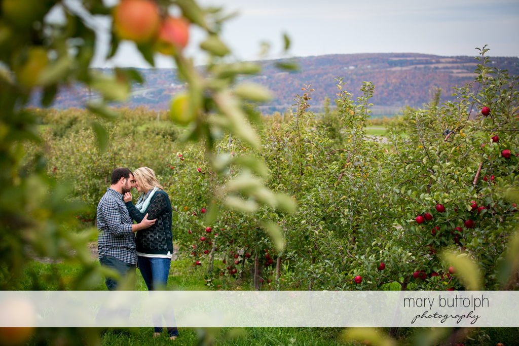 Couple share a tender moment in a garden full of apples at Beak & Skiff Apple Orchards Engagement