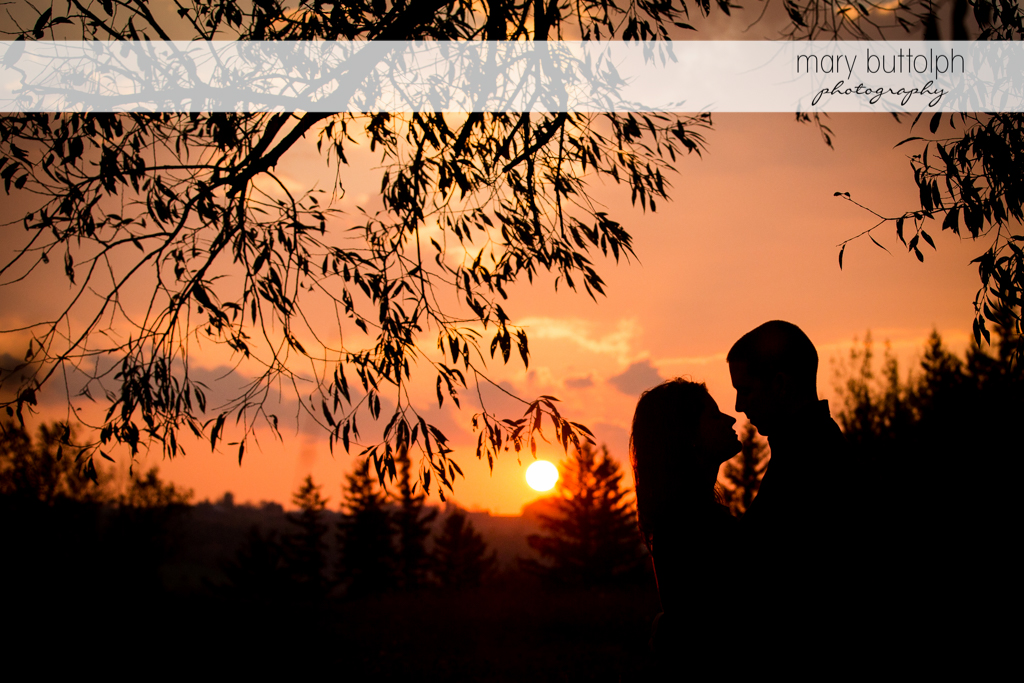 Couple catch the last rays of the sun in the garden at Skaneateles Lake Engagement