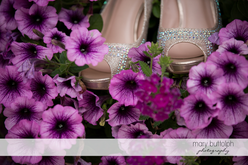 The bride's wedding shoes on top of lavender flowers at the Lodge at Welch Allyn Wedding