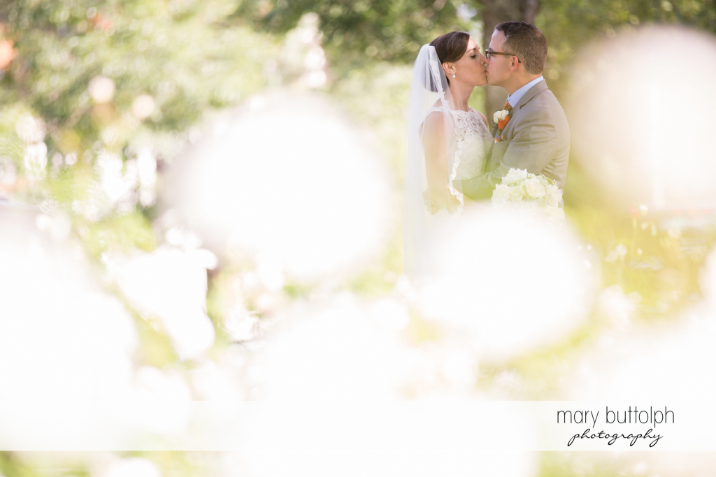 Couple are bathed in white light in the garden at the Inns of Aurora Wedding
