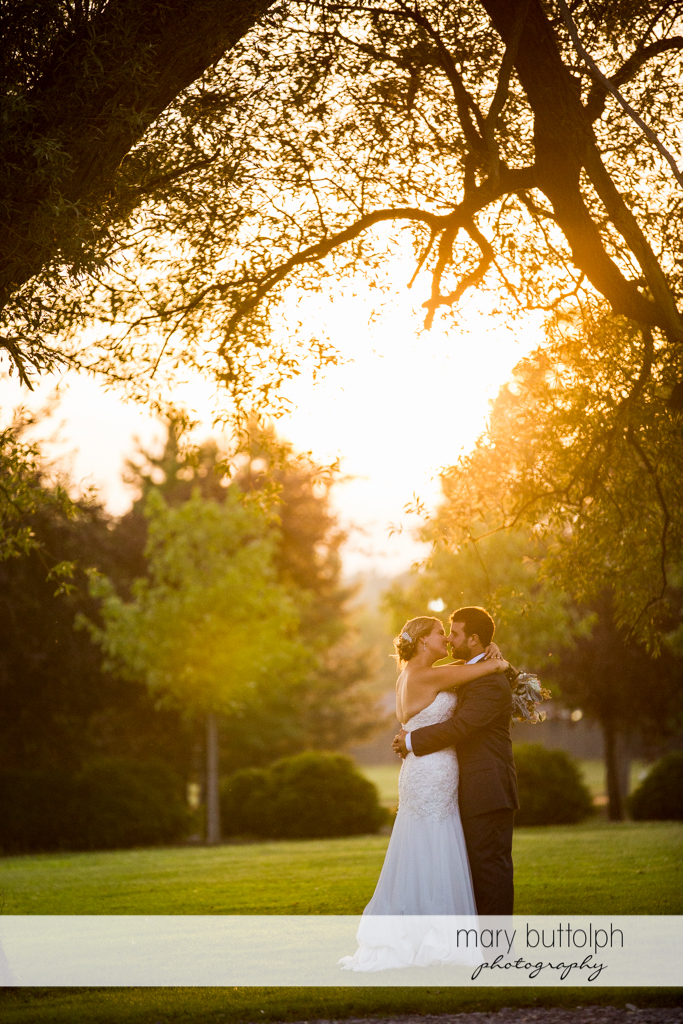 Couple embrace as they catch the last rays of the sun in the garden at Emerson Park Pavilion Wedding