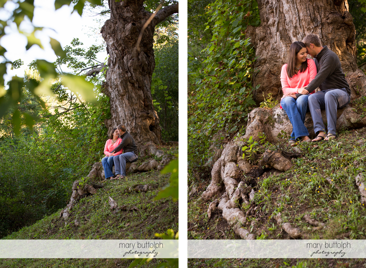 Couple sit in the park in front of an old tree at Marcellus Engagement