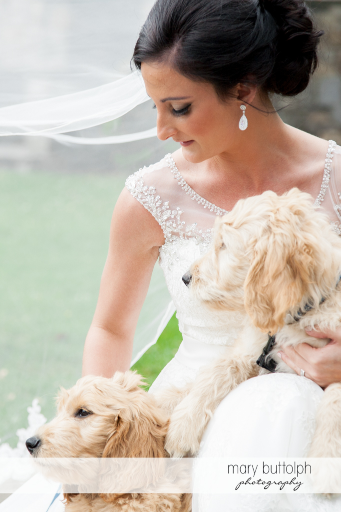 Bride shares the spotlight with her pet dogs at Anyela's Vineyards Wedding