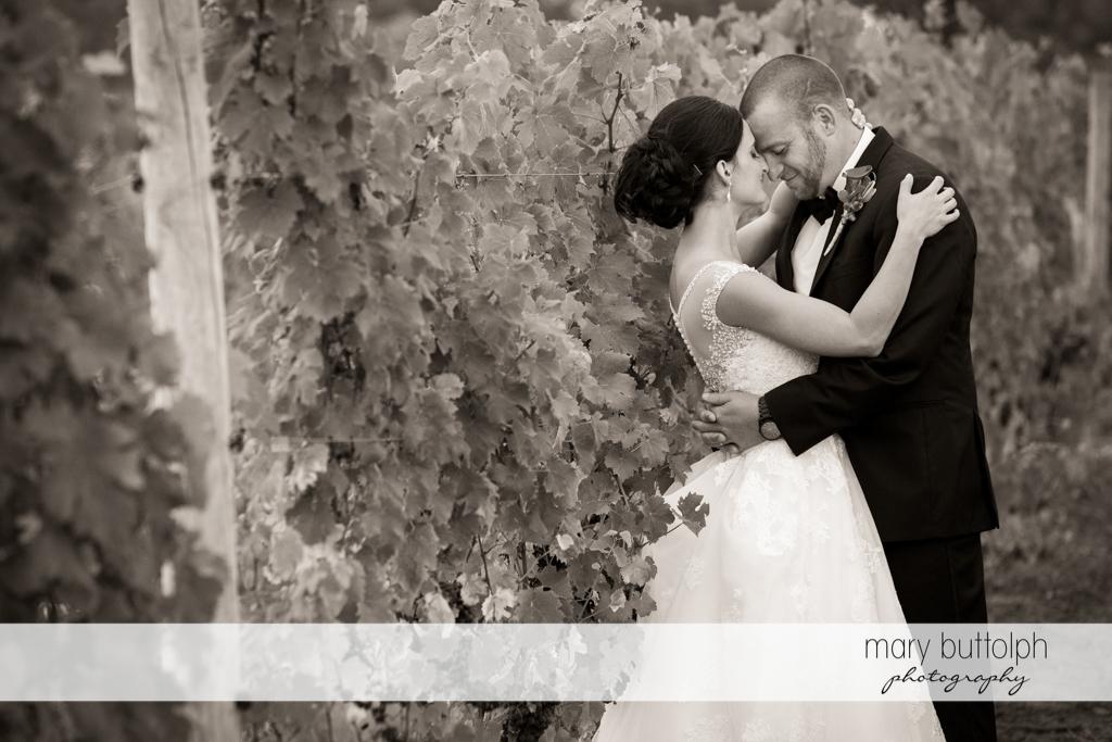 Couple rub noses at the vineyard at Anyela's Vineyards Wedding