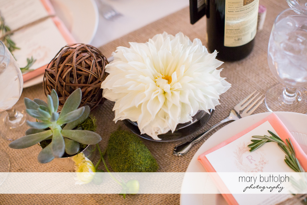 Succulent plant and flower bring nature to the table at the Frog Pond Bed & Breakfast Wedding