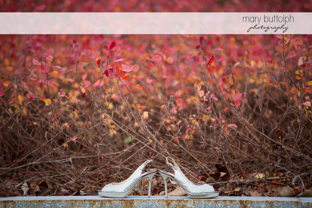 Bride's wedding shoes on a curb in front of red and pink plants at the Lodge at Welch Allyn Wedding