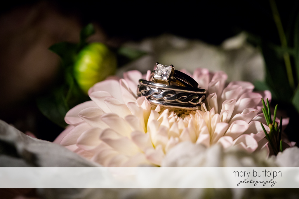 Bride's wedding ring sits on a flower at The Lodge at Welch Allyn Wedding