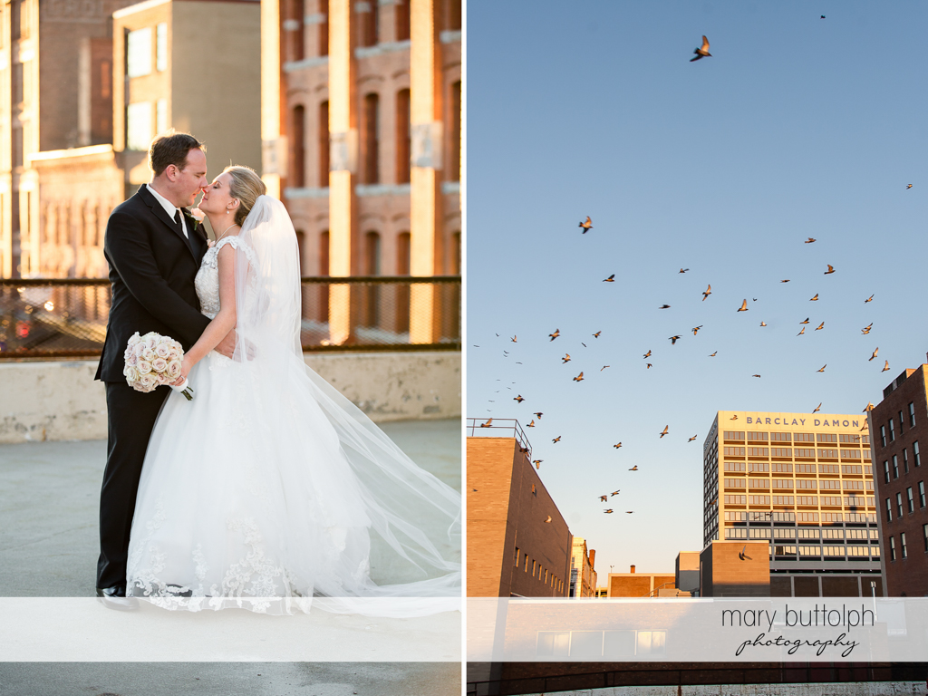 Couple share a tender moment as pigeons fly above them at SKY Armory Wedding
