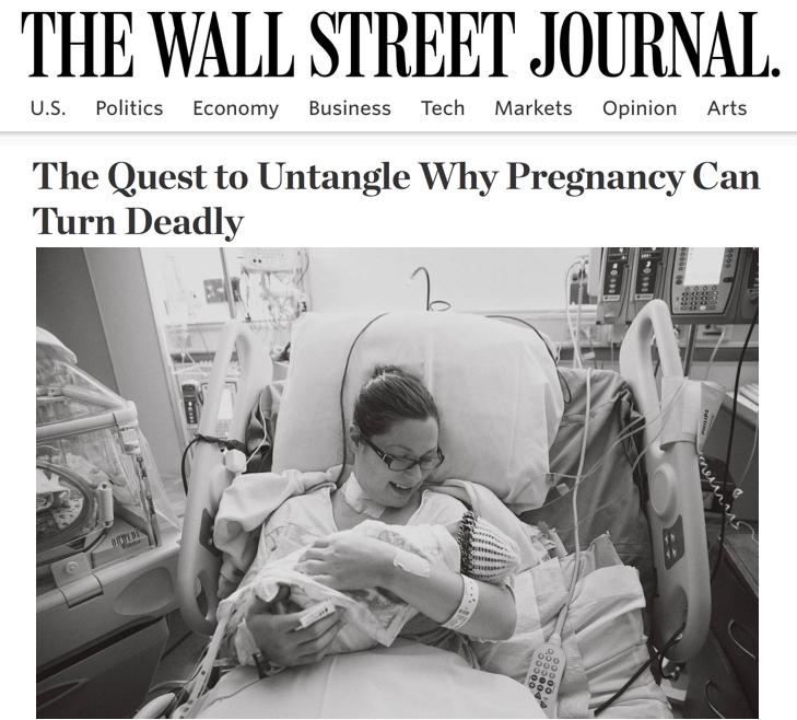 Wall Street Journal Accreta Kristen Terlizzi