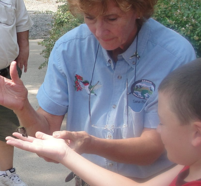 Tana Beasley shares the thrill of releasing a hummingbird after banding.