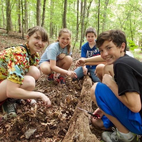 Ecology Camp