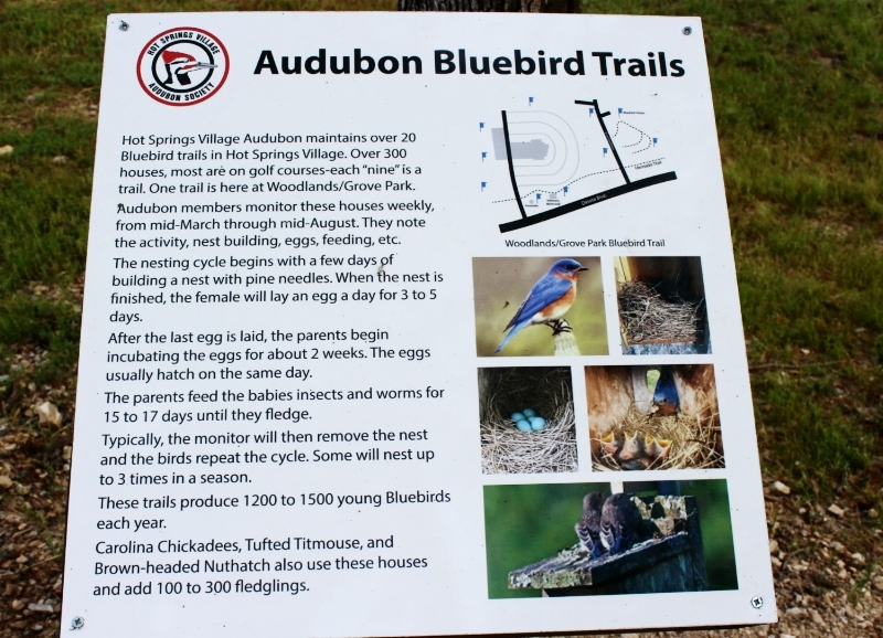 bluebird-trails.jpg