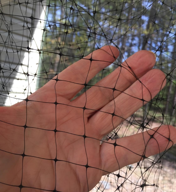window netting